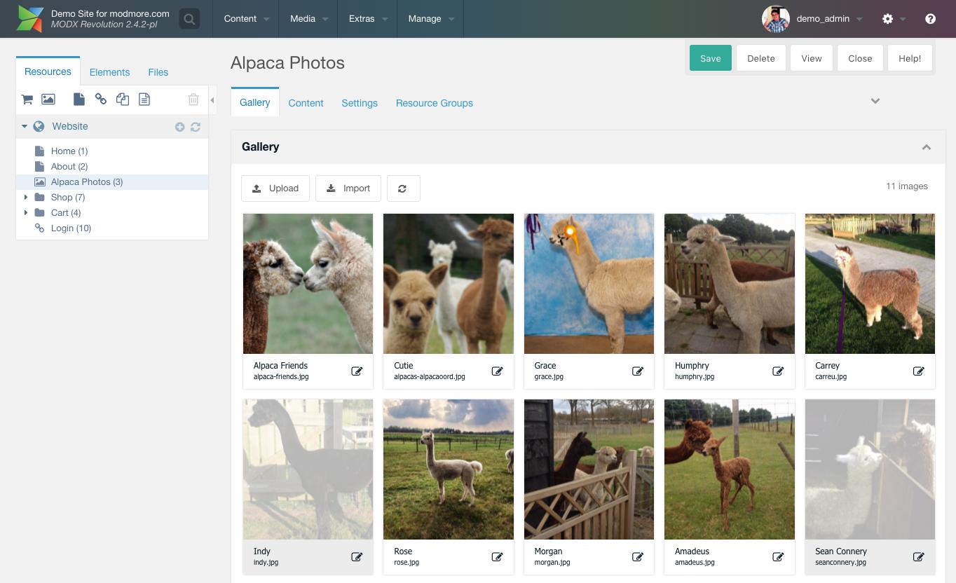 MoreGallery in action with pretty alpaca photos.
